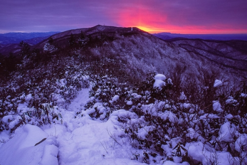Firescald Ridge, Appalachian Trail, NC/TN